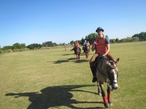 Polo Horseback Riding