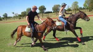 Exercising with your Horse!