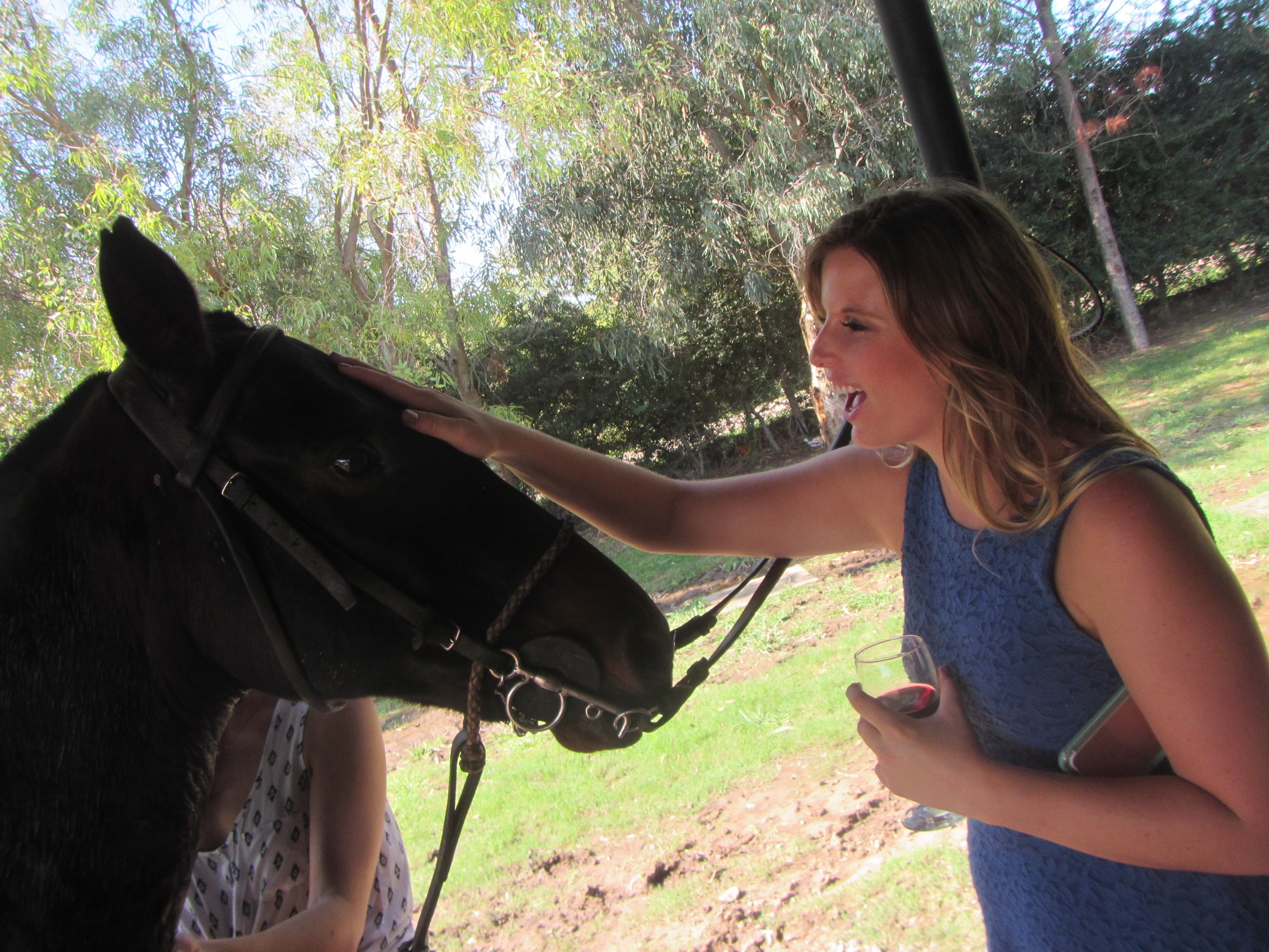 Taking care of our horses