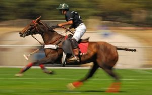 HOW TO PLAY POLO?