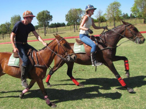 Exercise on a horse