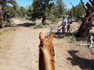 bikes and horses sharing trails in estancias and rural areas
